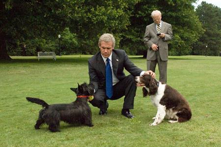5 «Буш» (2008)